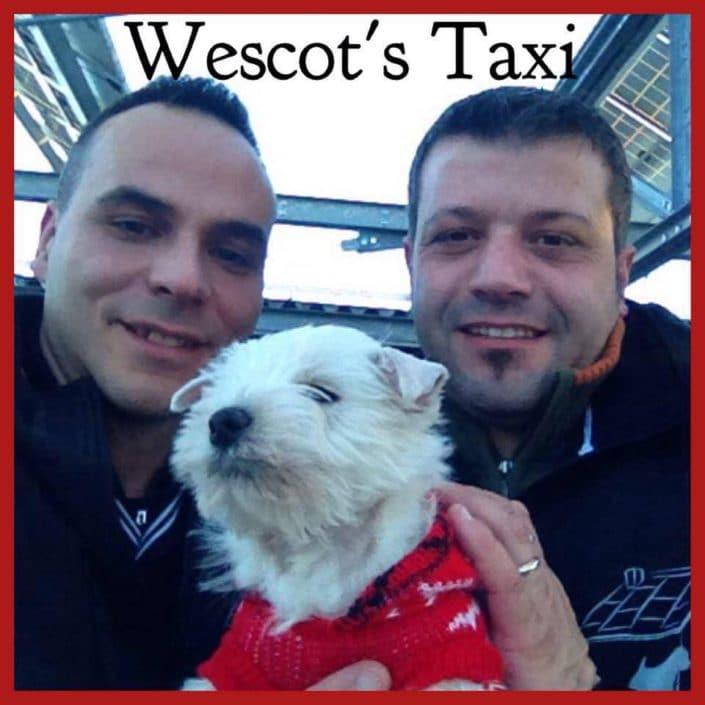 Wescot's Taxi