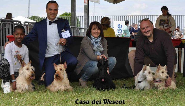 IDS Ravenna 25 Aprile 2017