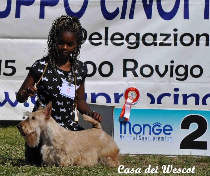Nds Rovigo Isola di Albarella 21 Maggio 2017