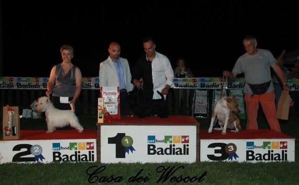 Esposizione Reg. Canina Ravenna